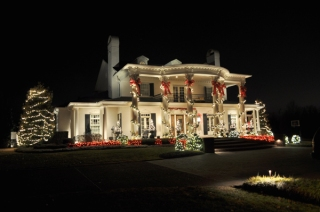 stunning outdoor column wraps and tree lighting