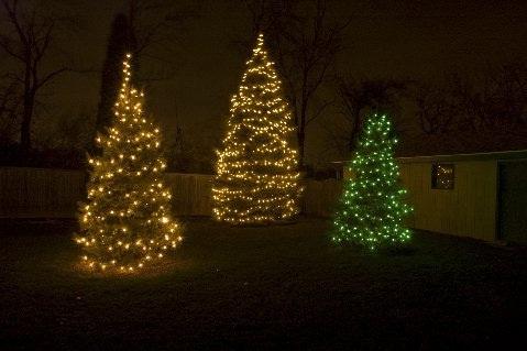 Elegant Nashville Christmas tree lighting