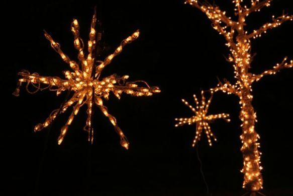 Nashville lighted starbursts in tree lighting