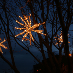 Nashville lighted stars in trees