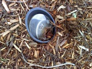 lens-cover-damaged-by-mulch-pile