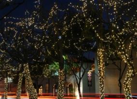 Nashville commerical holiday tree lighting