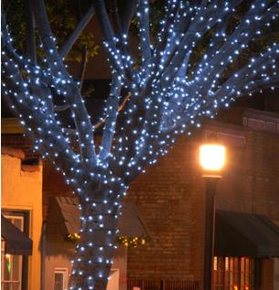 OLP Nashville Holiday tree lighting