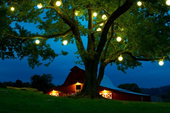 Orb Lighting at Arrington Vineyards by Outdoor Lighting Perspectives of Nashville