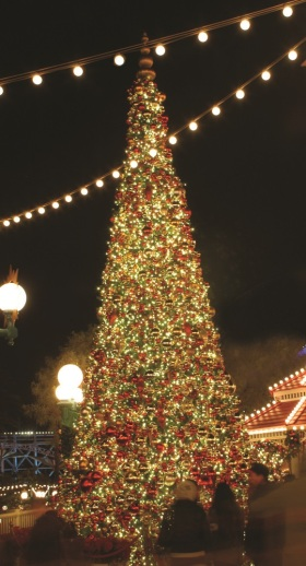 tree lighting and festoon lighting used together for this commercial holiday lighting installation