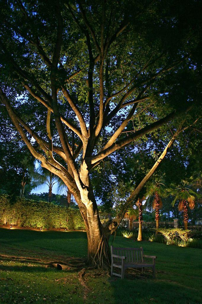 Nashville focal architectural outdoor lighting