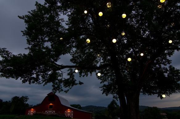 Orb lighting by Outdoor Lighting Perspectives of Nashville at Arrington Vineyards. Picture provided by Nash Severance Photography