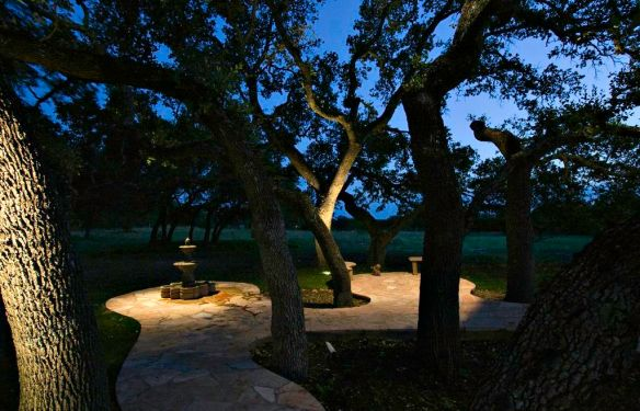 Nashville tree and patio lighting