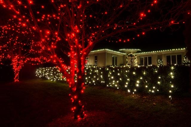 Colorful Nashville Holiday Lighting