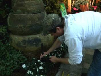Our talented team installing lighting in the Living Stone vignette at the Nashville Lawn and Garden show 2015.