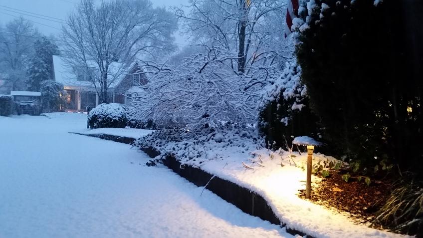 Nashville landscape lighting plays softly against the winter snow.