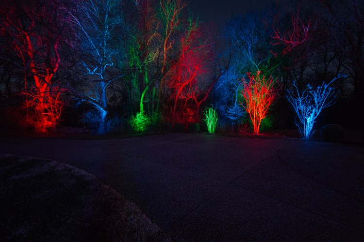 nashville-colorful-holiday-outdoor-lighting