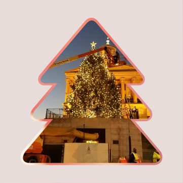 2016-christmas-tree-at-the-capitol-downtown-nashville