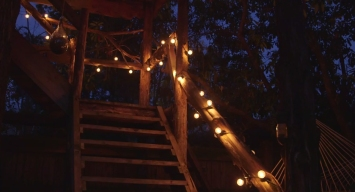 Lighting added to stairway into children's treehouse.