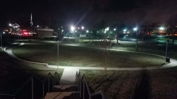 Nashville Outdoor Lighting at Tapestry Dog Park in Brentwood TN