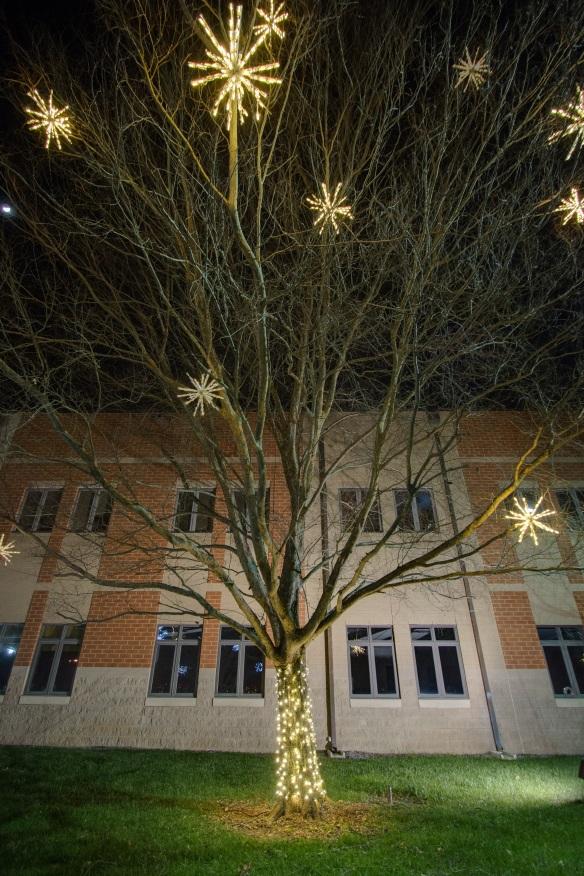 Holiday tree lighting at Christ Community Church