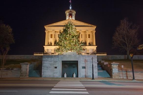 Led Lights Give Capitol Tree Cooler >> Nashville Outdoor Lighting Perspectives Landscape Residential